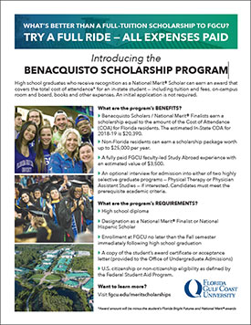 Thumbnail image of scholarship flyer