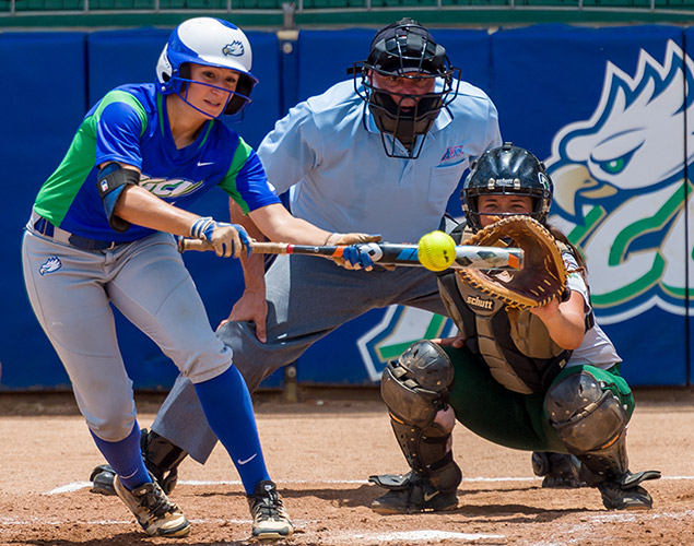 FGCU softball player bunking a ball in a game.
